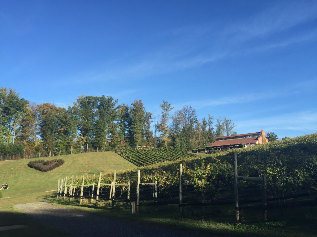 Potomac Point Winery - Stafford, VA
