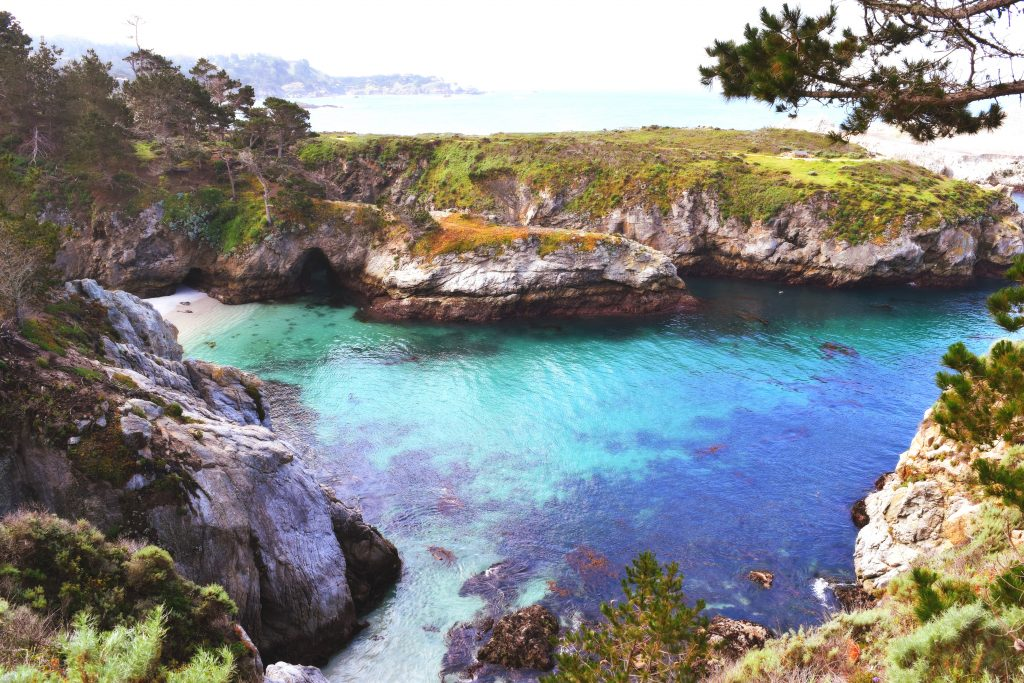 Point Lobos State Natural Reserve - Carmel-By-The-Sea, California | getinmymouf.com